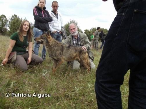 foto-5-copy-patricia-algaba