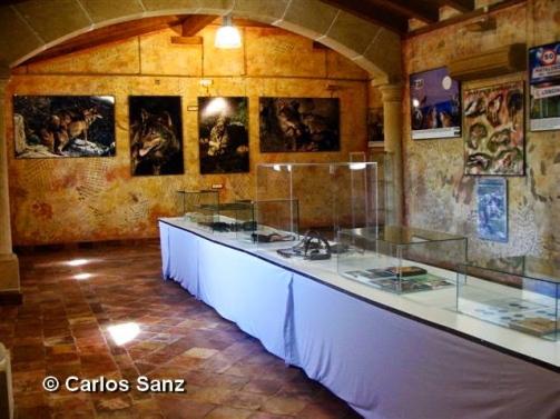 foto-2-copy-carlos-sanz
